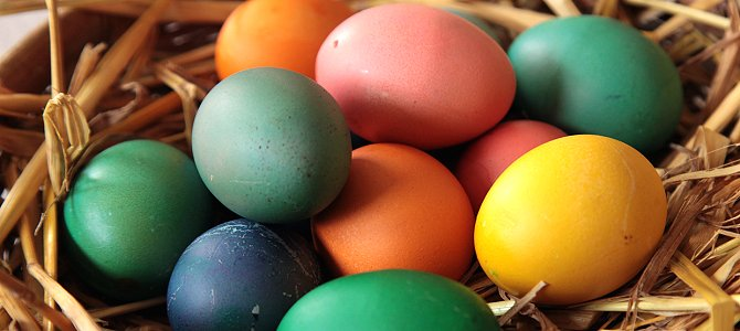 Bird-Friendly Gifts for Easter