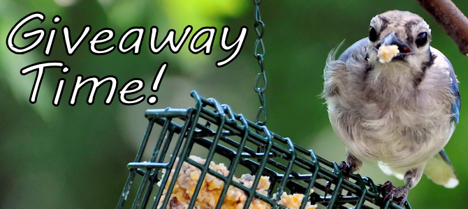 Giveaway Time – Cage Feeder!