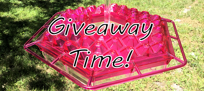 Giveaway Time – Hummingbird Feeder!