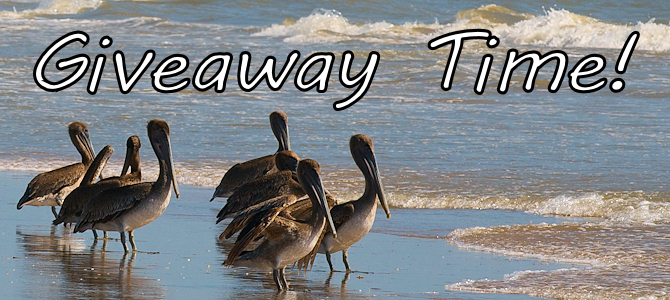 Giveaway Time – South Texas Birding!
