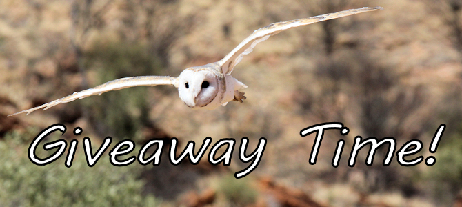 Giveaway Time – North American Owls!
