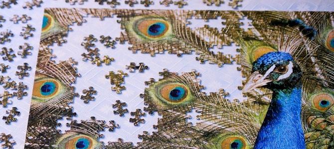 Fun (and Birding!) With Bird Jigsaw Puzzles